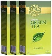 LaPlant Green Tea (300GM, Pack of 3)