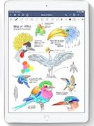 Apple iPad (2020) Wi Fi