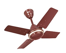 Indo Little Active Ceiling Fan (Brown)