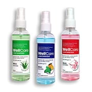 WellCare Non Sticky Hand Sanitizer (100ML)