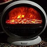 Warmex PTC 09 Bonfire Fan Room Heater (White)