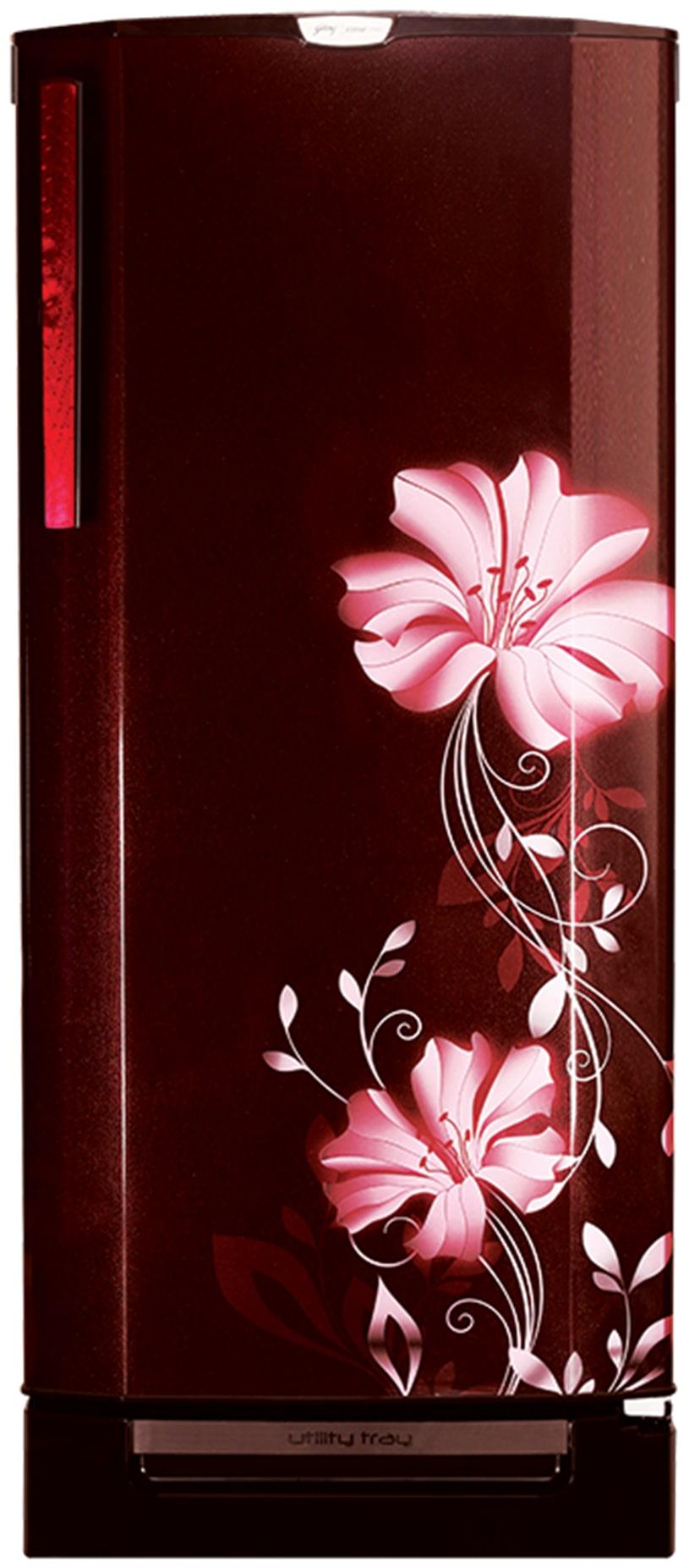 Godrej 190 L Direct Cool Single Door 4 Star Refrigerator (RD EDGEPRO 190 CT 4.2, Iris Wine)