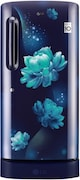 LG 215 L Direct Cool Double Door 4 Star Refrigerator (GL D221ABCY, Blue Charm)