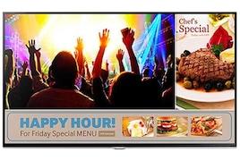 Samsung 48 Inch LED Full HD TV (RM48D)