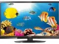 Intex 24 Inch LED HD Ready TV (LED-2410)