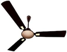Bajaj Ultima Dziner Ceiling Fan (Black & Rose Gold)