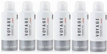 Park Avenue Voyage Deodorant Body Spray (100ML, Pack of 6)