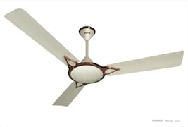 Activa Windsor Ceiling Fan (Brown & White)